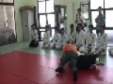 Turkish Submission Wrestling Vs. Aikido