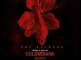 Colombiana Movie Preview