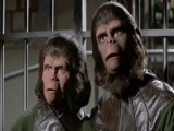 Planet Of The Apes Franchise Retrospective