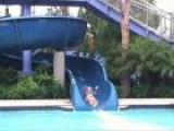The Disneyland Hotel In Anaheim, California