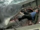 Top 10 Horror Movie Animals
