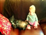 Baby Laughing At Snoring French Bulldog