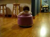 Cute Baby On Roomba