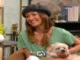 Access Hollywood Live: Maggie Q Asks You To Rescue A Lovable Animal Companion