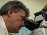 Study Reinforces Alzheimer