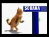 Garfield Menari Lagu Tamil