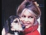 Brigitte Bardot Atomise Les &#039 &#039 Zozos&#039 &#039 Du Gouvernement
