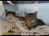 Cassandra Et Princesse Le 2 Octobre 2011