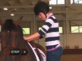 How To Mount A Horse