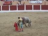 II.- Alberto Aguilar Torejant Al Sis&eacute Brau De Pepe Escolar A C&eacute Ret. 2011