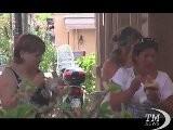 Il Caldo Assedia Lo Stivale, Oltre 40 Gradi A Firenze E Messina. Le Citt&agrave Meno Bollenti Catania E Reggio Calabria