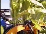 KIRPY - Ré Colteuse De Tabac Autochargeuse