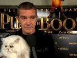 Puss In Boots Cat Premiere Newsreel Official - Antonio Banderas