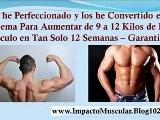 Rutina Para Aumentar Masa Muscular Y Perder Grasa