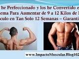 Rutina Para Aumentar Masa Muscular Rapidamente