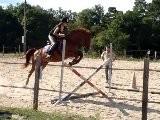S&eacute Ance De Saut D&#039 Obstacles 26.07.10
