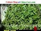 Tea China Culture Lushan Lushan History LuYu Make