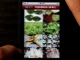Thai Food Guide IPhone App Demo - DailyAppShow