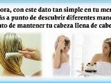 Tratamiento Natural Para El Cabello - Remedios Caseros Para El Cabello