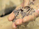 Video: Coin Washer Cleans SF Hotel&#039 S Money