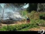 Vento E Temperature Bollenti: Brucia L&#039 Hinterland Cosentino. Allarme Anche Nel Parco Del Pollino, Ipotesi Di Dolo
