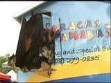 VIDEO: Food Cart Fire 5pm 9 4 11