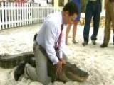 Alligator Wrestling Comes To The Villages
