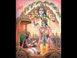 2 9 BHAGAVAD GITA TELUGU DISCOURSE BY SWAMI AMRITANANDA RAMA KRISHNA MISSION