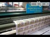 Taimes 33VCX Printer Printing - Www.loly.com.cn