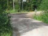Mini Test - Finlandia 2011 - Armindo Araujo