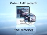 Mocha Projects: Training Series From Curious Turtle