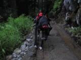 Week 2: Hiking St. Mark's Summit
