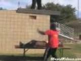 Gorilla Wrestling Fail
